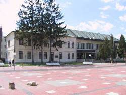 Muzeum Kultury Ukraińskiej, Svidník